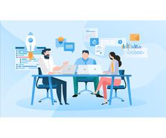Affordable Custom Application Development Services - TechAvidus
