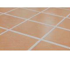 Efficient Professional Carpet Cleaning Company | Steamextoledo.com