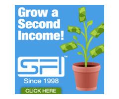 Earn a six figure income