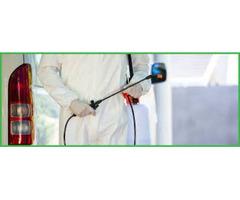 Pest Control & Management for Business