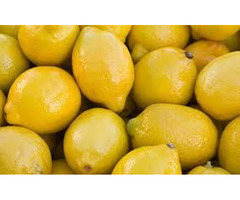 Make your Curries Healthy by Adding Lemon Purchased from Online Suppliers