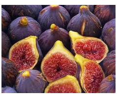 Purchase High Quality Figs from Professional Suppliers at Economical Rates