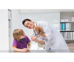 Get Animal Hospital