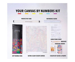 Paint by Number Canvas for Kids