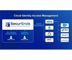 What is Cloud Identity & Access Management?