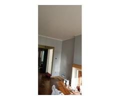 Darios Painting and Handyman
