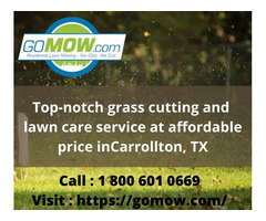 Top-notch grass cutting and lawn care service at affordable price in Carrollton, TX