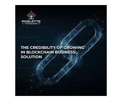 THE CREDIBILITY OF GROWING IN BLOCKCHAIN BUSINESS SOLUTION