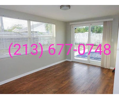 Rent House/Condo available at Port Richey, Florida | free-classifieds-usa.com