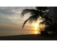 Travel To Srilanka and Explore !