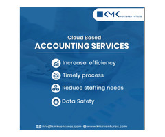 Get Highly Professional Cloud Accounting Service in USA