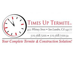 Termite Inspection in Fremont