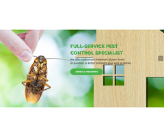 Looking for Bed Bug Treatment before they become an even bigger problem - First Choice Pest Control