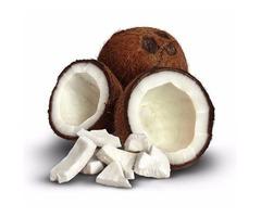 3 New Hot Offers: Coconut Oil, Honey & Apple Cider Vinegar
