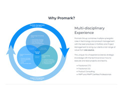 product management consulting services - Promark Group
