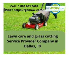 Lawn care and grass cutting Service Provider Company in Dallas, TX