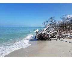 WOW!  Videos of beautiful Naples Florida