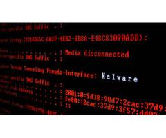 Malware removal Livonia