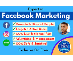 Professional Facebook Marketing and Promotion Service in USA