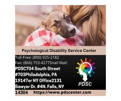 Psychological Disability Service Center