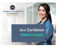 Best Caribbean Medical School Fees