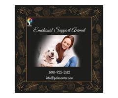 Register Emotional Support Dog
