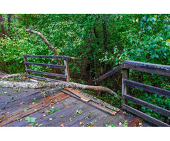 Emergency Tree Service Near Me - Sioux Falls, SD