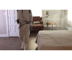 Get Professional Disinfect Cleaning Services to Avoid Dangerous Viruses