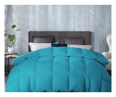 Alluring Turquoise Comforter