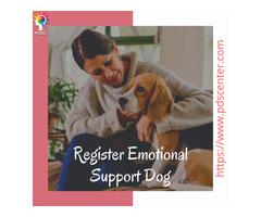 Emotional Support Letter | pdscenter
