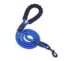 Beneli Heavy Duty Dog Leash (150 cm) in Blue for Sale