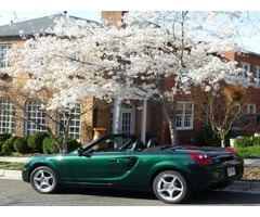 Toyota: Mr2 Mr-2 Spyder