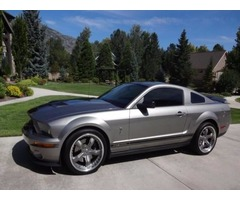 Ford: Mustang Shelby