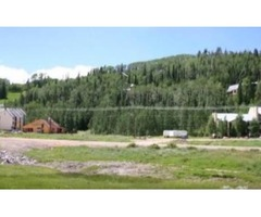 1 Minute Walk to the Giant Steps Lodge! 2.73 Acres