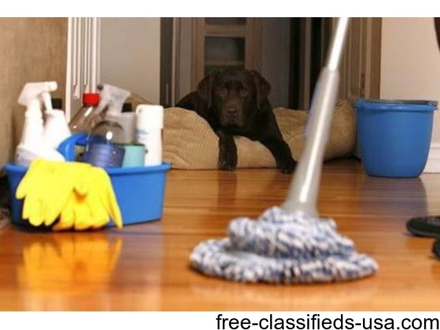 Cleaning Technician/Housekeeper/Cleaning Lady | free-classifieds-usa.com