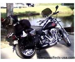 2004 Harley Softail FXSTS
