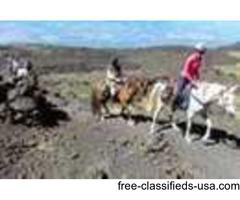 High Mountain Horse Trekking in Sicily