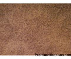 New Shag Carpet