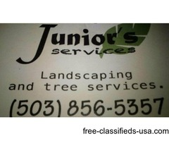 Junior's services landscaping and services the ultimate handyman
