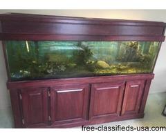 125 fish tank