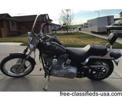 2004 Harley Davidson FXST Softail For Sale