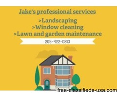 Jake's professional services