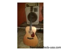 Santa Cruz OM/PW acoustic guitar