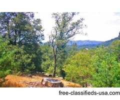 1/3 acre of forested land - Crestline