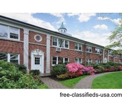 Stunning 2 bed updated condo unit in Chester Heights Gardens