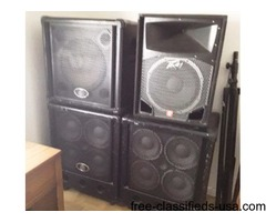 Ampeg for sale