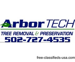 Tree Removal & Preservation