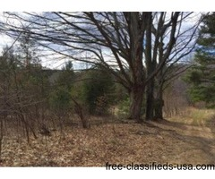Hunting Property - 40 Acres