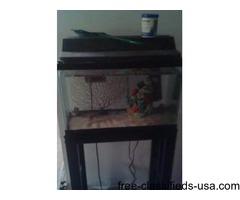 10 gallon fish tank w/ stand