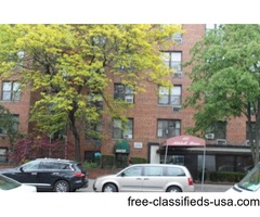 Midwood: Large One Bedroom Co-op